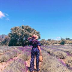 Lavender Fields PEC ft. Versace EROS Flame